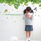 ウォールステッカー 鳥と木々・リーフ グリーン 葉 北欧 シール 壁紙 ポスター ツリー リーフ かわいい おしゃれ