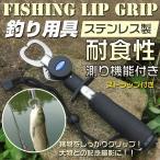 【5%OFFクーポン配布中】 フィッシュグリップ フィッシュキャッチャー 魚掴み器 計測 重量 長さ スケール付き 釣り ad118