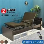 電動ベッド 電動介護(竹炭マットレス付) 電動ベッド 2モーター 電動 リクライニング プレジデント-ART