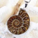 アンモナイト 化石 ペンダント Ammonite ネックレス Pendant 天然石