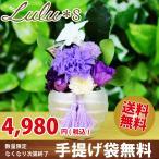 【クリスマス Xmas】【送料無料】Lulu*s(ルルズ)「 プリザーブドフラワー 仏花デンファレ 紫苑(しおん)」