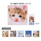 飛び猫 メガネ拭き 3222 N かわいい ネコ ふくろう コブタ クリーニングクロス 眼鏡拭き スマホクリーナー 2020