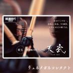 剣道用めがね 天武TS-020、天武TP-010(度付き )日本製