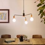 トレノ ペンダントランプ | ワンルームにおすすめ 3灯 金属フレーム アンティーク カフェ風 Treno ディクラッセ 電球別売