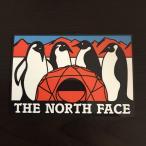【TH-3】THE NORTH FACE ザ ノースフェイス ステッカー AT
