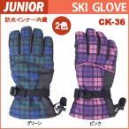 スキーグローブジュニア/ジュニアスキーグローブ/ジュニア用スキー手袋/防水インナー内蔵/子供用スキーグローブ/子ども用防寒手袋/CK-36