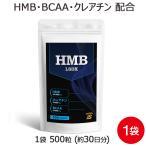 HMB クレアチン BCAA  アルギニン シトルリン HMBタブレットLSDX 500粒 [M便 1/6]