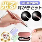 耳かき ライト みみかき 耳かき ピンセット 光る USB 子供 耳掻き 耳そうじ