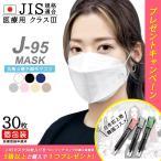 日本製 VFE PFE BFE 99.9% 30枚入 個別包装 日本製JN95マスク 大阪工場直送