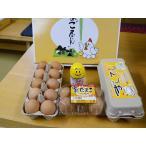 まんてん生卵20個 温泉たまご4個入1パック 生卵専用醤油卵にイイ醤 産地直送でお届け