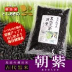 産直 28年度  魚沼産古代黒米「朝紫」500g