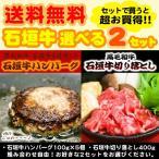 【送料無料】石垣牛ハンバーグ&切り落とし 選べる2個セット │黒毛和牛ハンバーグ│