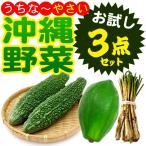 ショッピングお試しセット 沖縄野菜 お試し3点セット(ゴーヤー 青パパイヤ 島らっきょう)(送料無料)(冷蔵発送)