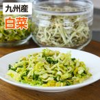 乾燥野菜 白菜 1袋25g 生野菜420g相当 九州産野菜 長期保存が可能 非常食 保存食 備蓄食