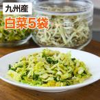 乾燥野菜 白菜 5袋セット 1袋25g 生野菜420g相当 九州産野菜 安心安全国産 長期保存が可能なエアドライ 非常食 保存食 備蓄食