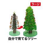 クリスマスツリー 卓上 マジッククリスマスツリーラージタイプ 自分で育てる不思議なツリー マジックツリー