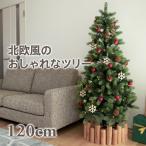クリスマスツリー 120cm ドイツトウヒツリー 北欧 おしゃれ スリム ヌードツリー