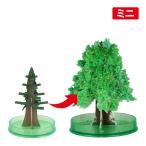 クリスマスツリー 卓上 マジック クリスマスツリーミニ 10時間で育つ不思議なツリー マジックツリー