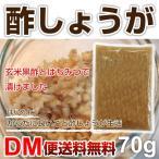 DM便送料無料 酢しょうが 70g 酢生姜 しょうがの酢漬け 生姜 純玄米黒酢 無添加 酢 しょうが ピラミッド・ダービー