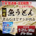【ご注文順に随時発送致します】日南 魚うどん ダシ付き 冷凍 うどん150g ダシ60ccセット 宮崎県 国産 うどん 麺  みんなの家庭の医学