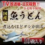送料無料 魚うどん 10袋セット ぎょうどん さかなうどん 宮崎県 日南