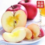 【送料無料】青森県産蜜入りサンふじ10〜11玉 約3kg りんご 3kg 蜜入りりんご 蜜りんご