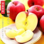 送料無料 青森県産 弘前 高糖度 ふじ14〜18玉 約5kg ふじ 高糖度 ふじ  5kg りんご 5kg ふじりんご リンゴ 青森産 りんご 林檎