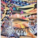 「ベッペ・スパダチーニ作品集 セクシー&トロピカル(Beppe Spadacini : Sexy & Tropical)」[B210002]