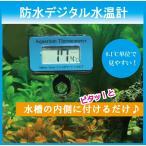 【送料無料】(ゆうメール)デジタル 防水 水温計 温度計 ブルー MITM-04 吸盤付き 水槽にピタッと貼るだけ アクアリウム 熱帯魚 水温管理