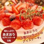 クリスマスケーキ/苺たっぷり!あまおうのアイス ケーキ(5号)送料無料 誕生日ケーキ|ジ ェラート|いちご