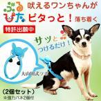 犬 のしつけに ぶるぴた・強化バネ 各2個セット 吠える犬、走りまわる犬がピタリと落ち着く トリマーの必需品 (使い方・大山田式 犬の しつけ DVD付)日本製