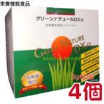 グリーンナチュール DX 4個 第一薬品