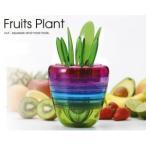 Fruits Plant(フルーツプラント)