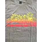 【 更にセール SALE 】 ハフ HUF アイランド Tシャツ ISLANDS TEE [GREY] /【レターパックプラス可】