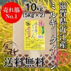 【送料無料】滋賀県ミルキークイーン5kg×2 平成28年産