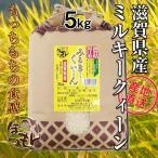 滋賀県産ミルキークイーン 5kg 平成29年産