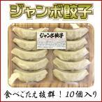 餃子 ジャンボ餃子 10個入り にんにくたっぷり 美味しいギョーザ ビッグ