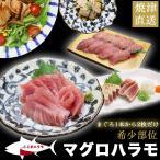 マグロ マグロ刺身 訳あり 2000円 ポッキリ  在庫処分 食品 キハダマグロのハラモ(ハラボ) 700g 80548