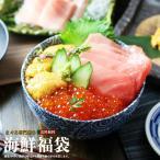 マグロ 海鮮福袋 マグロ刺身 訳あり 冷凍マグロ  本マグロ大トロ・無添加うに・北海道産いくら計800g 送料無料
