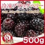冷凍ブラックベリー 500g×1 冷凍フルーツ ヨナナス