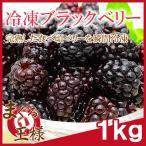 冷凍ブラックベリー 1kg 500g×2 冷凍フルーツ ヨナナス