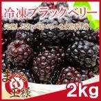 冷凍ブラックベリー 2kg 500g×4 冷凍フルーツ ヨナナス