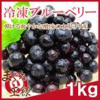 冷凍 ブルーベリー 1kg 500g×2 冷凍フルーツ ヨナナス