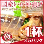 特大国産真いかの沖漬け 1杯×5パック(いか イカ 烏賊)