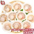ホタテ ほたて 特大 片貝ほたて 40枚 10枚×4袋 (殻付きほたて 帆立 貝 バター焼き 浜焼き バーベキュー BBQ 業務用 築地市場 ギフト)