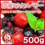 冷凍ミックスベリー 500g×1 冷凍フルーツ ヨナナス