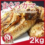 Tuna - まぐろカマ 2kg  (まぐろのカマ カマトロ まぐろ マグロ 鮪)