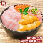 築地の海鮮丼セット(究極 約2杯分)本マグロ大トロ特盛り200g&無添加生うに&北海道産イクラ&王様のネギトロ