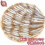 柳葉魚 - 訳あり ししゃも(子持ちシシャモ 業務用1kg)