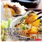 愛媛の2大鯛めし食べ比べセット 宇和島鯛めし 松山鯛